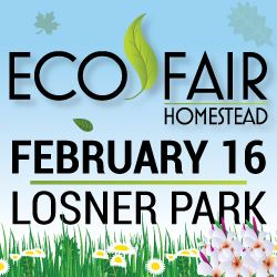 Eco Fair 2019 Web News