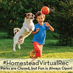 Homestead Virtual Recreation