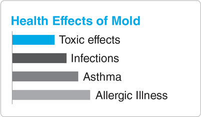 Health Effects of Mold